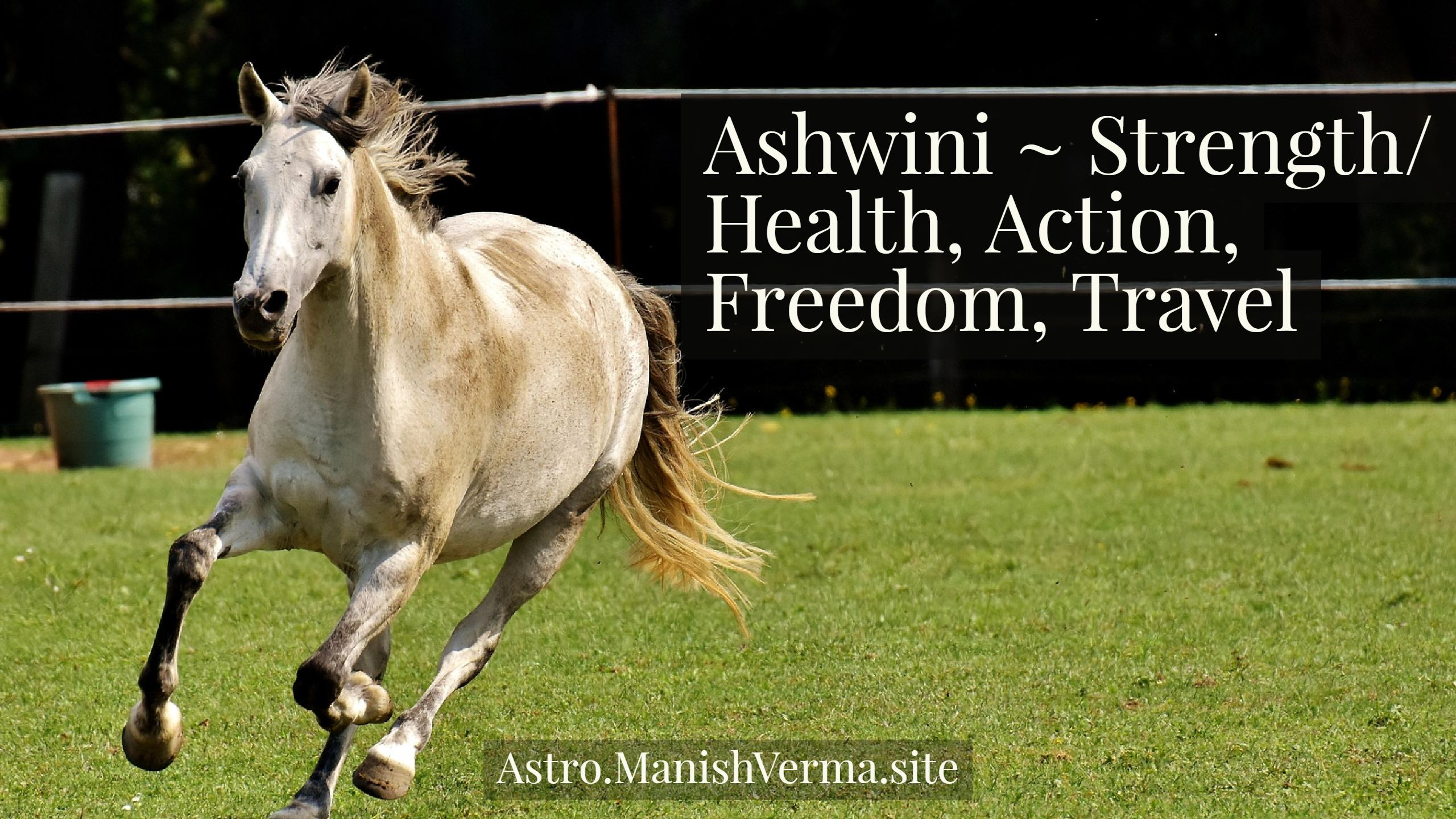 Ashwini Nakshatra ~ Strength, Health, Action, Freedom, Travel
